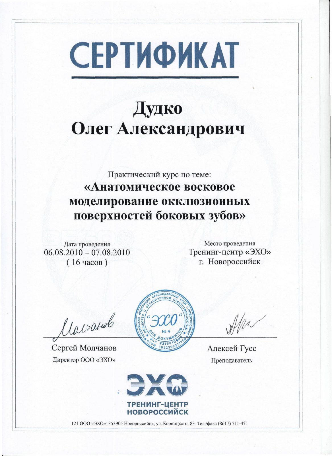 Сертификат Дудко О.А.