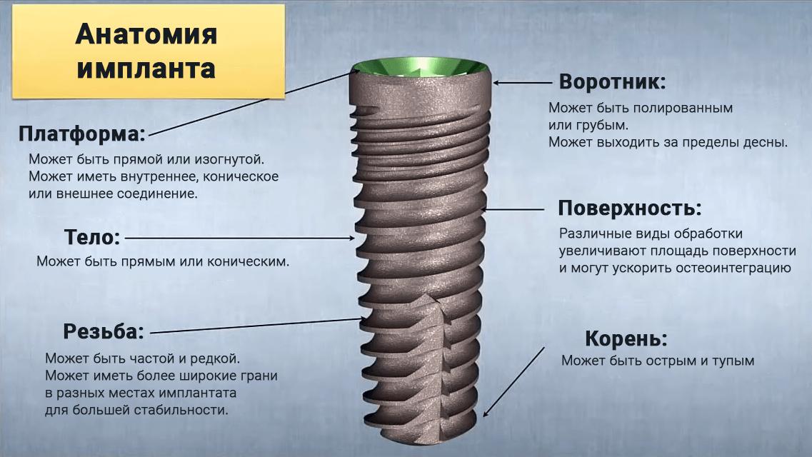 Структура тела зубного имплантата, который заменяет корень зуба, состоит из платформы, воротника, тела, резьбы и корня.